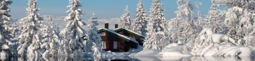 Cabin In Dreamforest on Blefjell: Spring Version