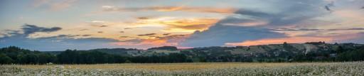 Buckwheat sunset
